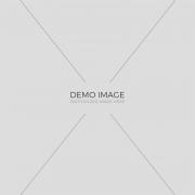 demo-img-3-2